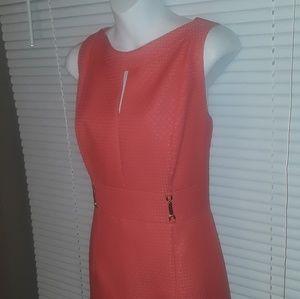 TAHARI Sz 10 Dress